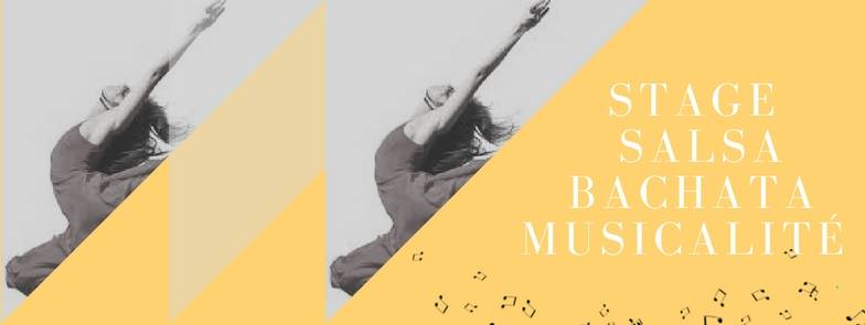 Stage Salsa, Bachata et Musicalités